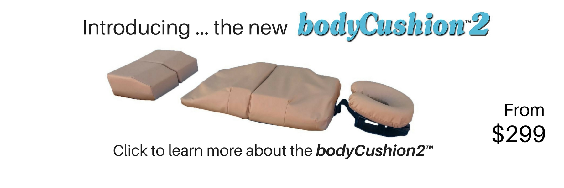 Introducing ... the new bodyCushion2. From $299. Click to learn more about the bodyCushion2