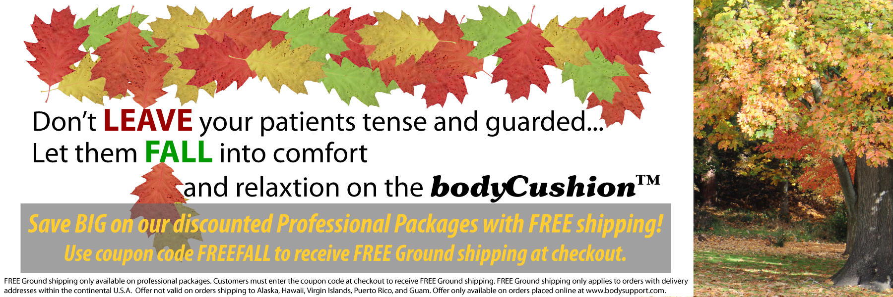 Save BIG on our discounted professional packages with FREE shipping!