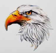 American Eagle Head Sticker Decal