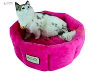 Armarkat Cat Bed C03CZH