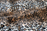 Tiger Dreamz Pet Bed - Jaguar