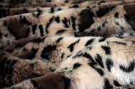 Tiger Dreamz Pet Bed - Clouded Leopard