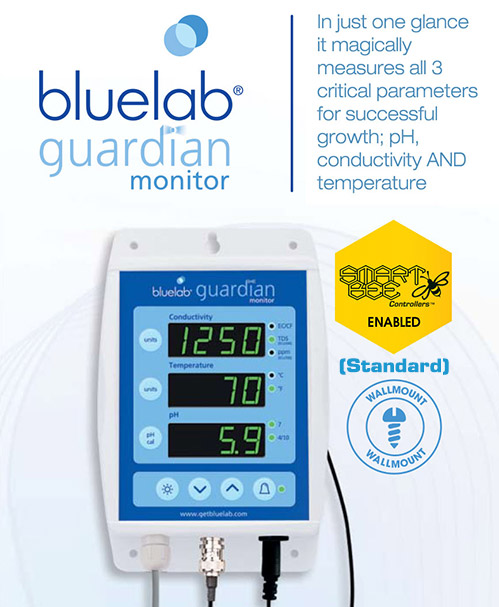 Buy a SmartBee Enabled BlueLab Guardian Monitor (Standard)