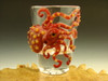 Octopus shot glass by Eli Mazet