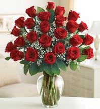 2 Dozen Red Rose Elegance Premium Dozen Roses