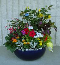 Blooming Grace Memory Garden (MGP3023)