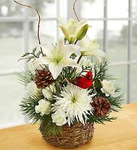 Wintertime Bird's Nest of Flowers