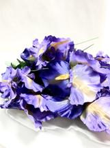 Silk Iris Bearded Pur x 9  989