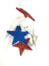 Pick Patriotic star spray x6 r