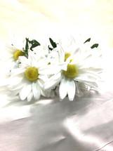 Silk White African Daisy each