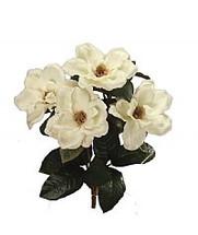 "Silk Magnolia 23"" bush x6 SB03 each"