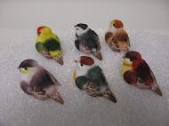 """BIRD 3"""" SWALLOW 1DZ #9018"""