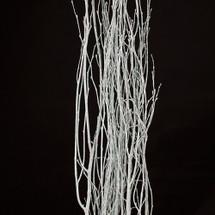 Irrid. BirchBranch 2' (5stm bu