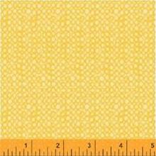 Sunnyside 05 1/2 Metre Length