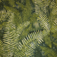 NZ FERN - GREEN 1/2 Metre Length