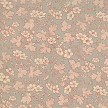 French General Favorites -  13525 14  Roche 1/2 Metre Length