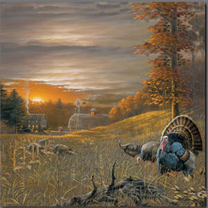 Turkey in the Field by Art Anderson