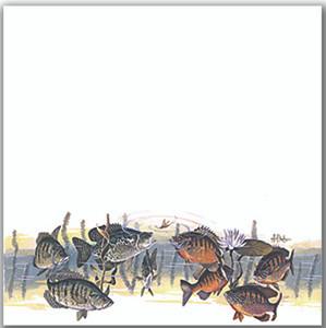 Panfish Bonanza (Les Kouba)