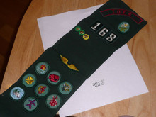 Girl Scout Sash with 14 patches and 3 pins