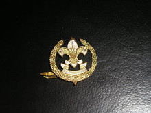 1917 Scout Executive's Hat Insignia RARE - Scout