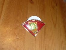 North Las Vegas Stake LDS Pin - Scout