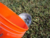 IFS1-G   Turf-Tec insect Flotation Sampler - Fill with soapy water
