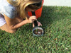 IFS1-G   Turf-Tec insect Flotation Sampler - Examine insects for type and quantity