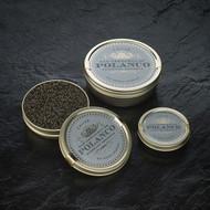 Finest Siberian Reserve Caviar 16 oz (454 g)