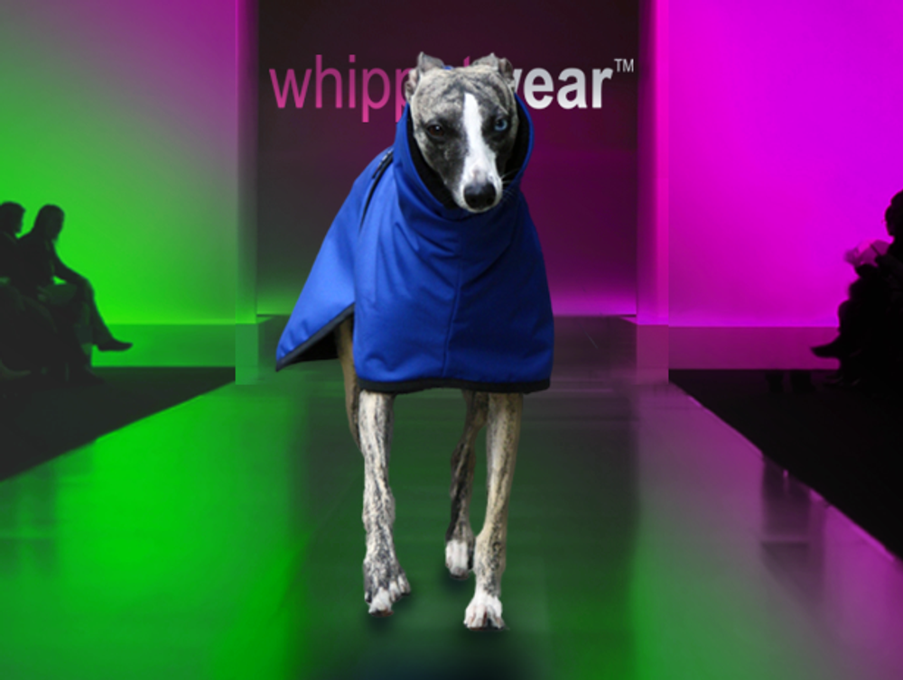 Splash Waterproof Whippet Coat