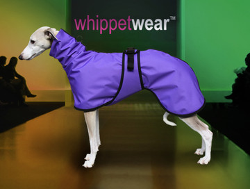 Splash Winter Whippet Coat