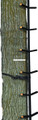 Muddy MCS0520 Ascender Climbing - System Tree Steps, 20' Total Height - MCS0520