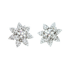 Andrew Hamilton Crawford Fireflower Earrings Silver Earrings