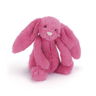 a Small Jellycat Bashful Bunny | Limited Edition