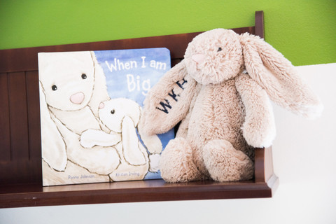 Jellycat Bunny and Jellycat Book