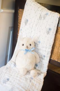 aden & anais Dream Blanket + Jellycat Owl
