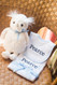 Jellycat Owl + 3 Marthas Drooler Bib and Burp