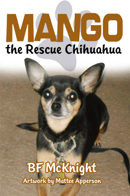 Mango the Rescue Chihuahua