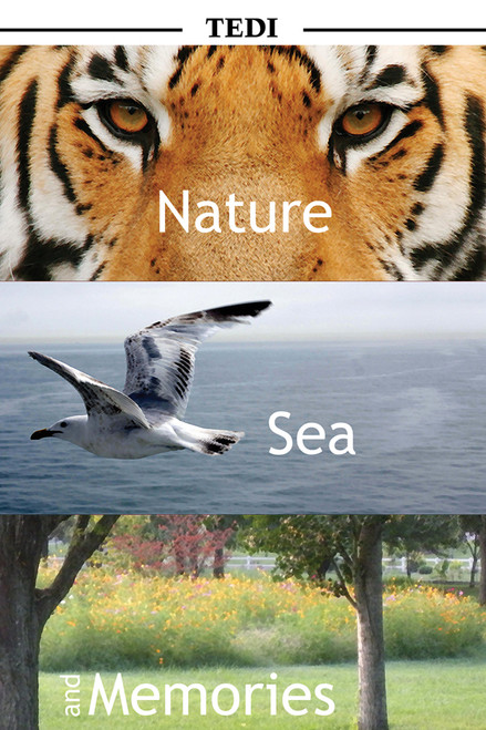 Nature, Sea - and Memories