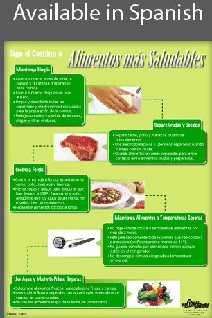 Safer Food Poster - SPANISH