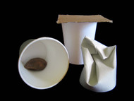 Foraging Paper Cups