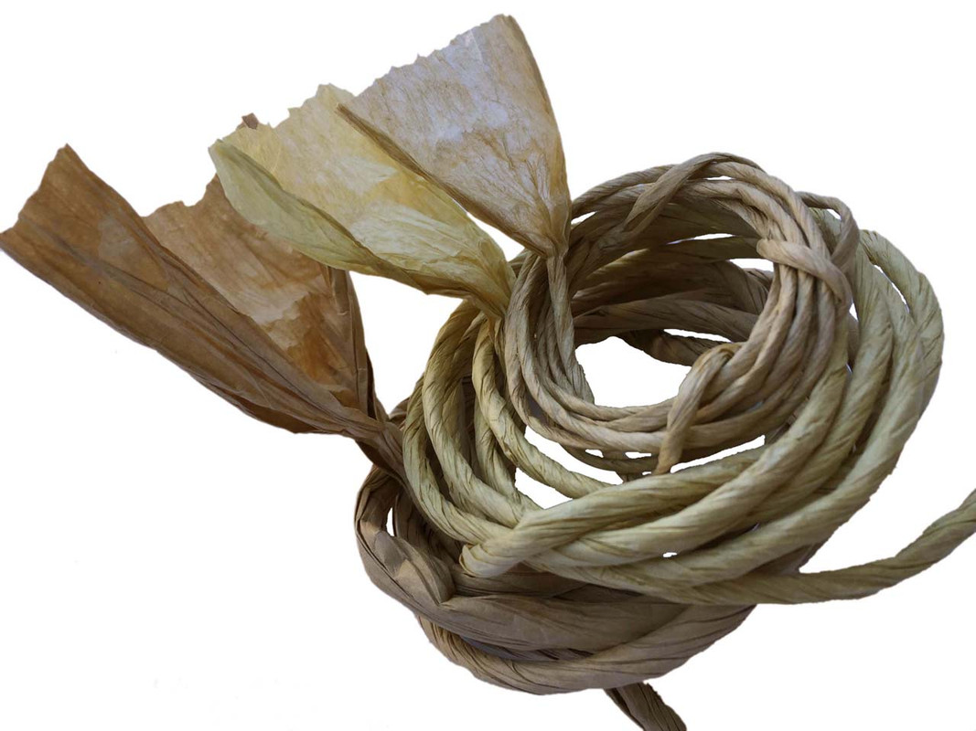 The three sizes of Twisted Paper with their ends unravelled.