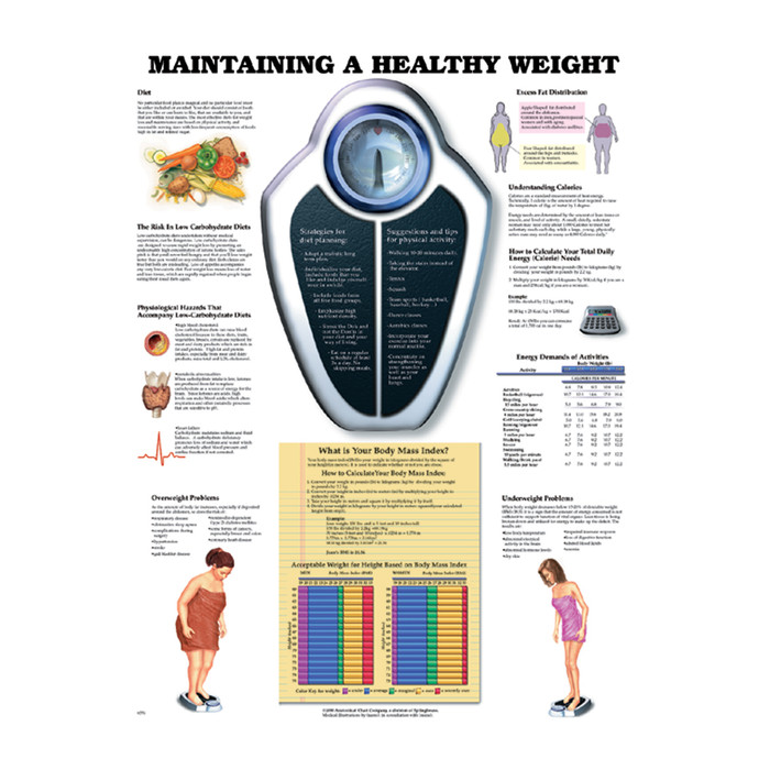 MAINTAINING A HEALTHY WEIGHT CHART