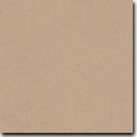 "Spekletone Kraft 8 1/2"" X 11"" Cover Weight Matte Cardstock (25 Per Package)"