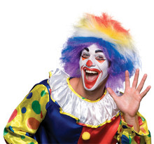 /clown-around-multicolor-wig/