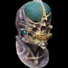 /cynomya-mask-fly-mutant/