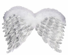 /angel-feather-wings-with-silver-glitter/