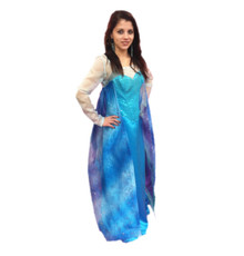 /bargain-elsa-dress-w-star-cape/
