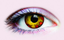 /epidemia-collectible-novelty-lenses/