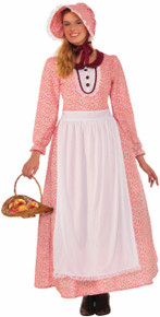 /pioneer-woman-dress-bonnet-and-apron/