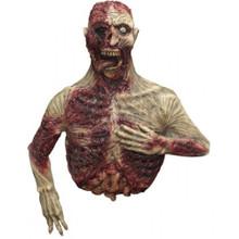 /inerted-corpse-prop-zombie-torso-prop/